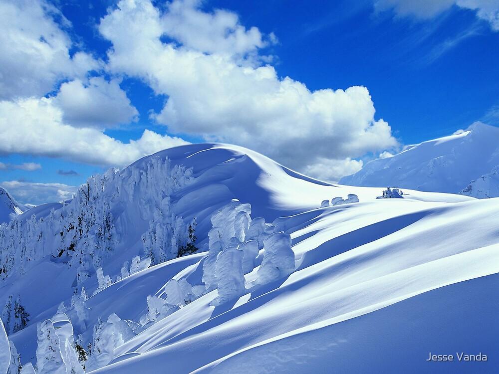 Altitude by Jesse Vanda