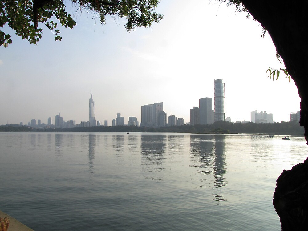 Xuanwu, Nanjing skyline, Jiangsu, China by DaveLambert