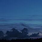 In the blue of the night by WesternExposure