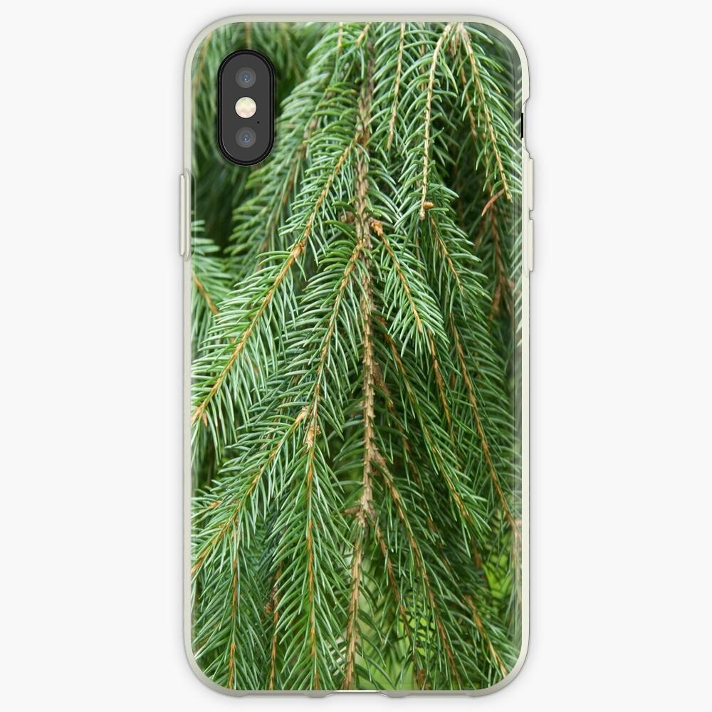 Pine Tree Closeup iPhone Case & Cover
