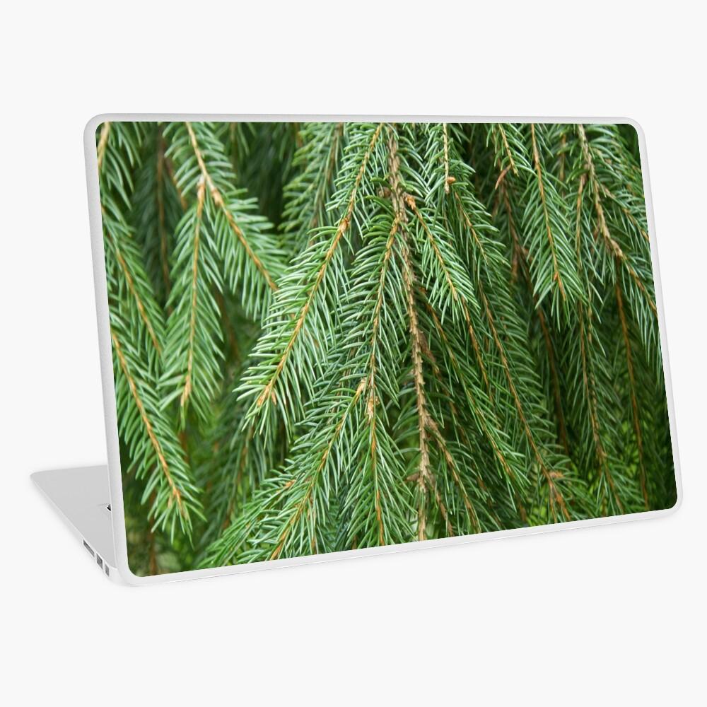Pine Tree Closeup Laptop Skin