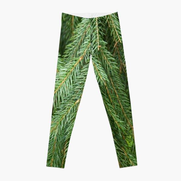 Pine Tree Closeup Leggings
