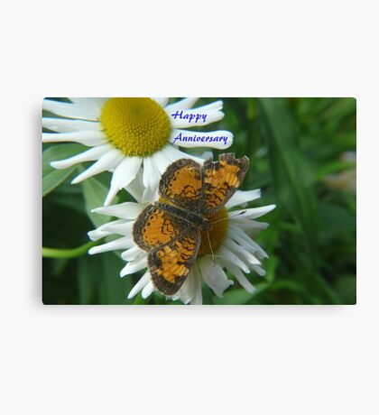 Daisy and Butterfly ..Anniversary Card Canvas Print