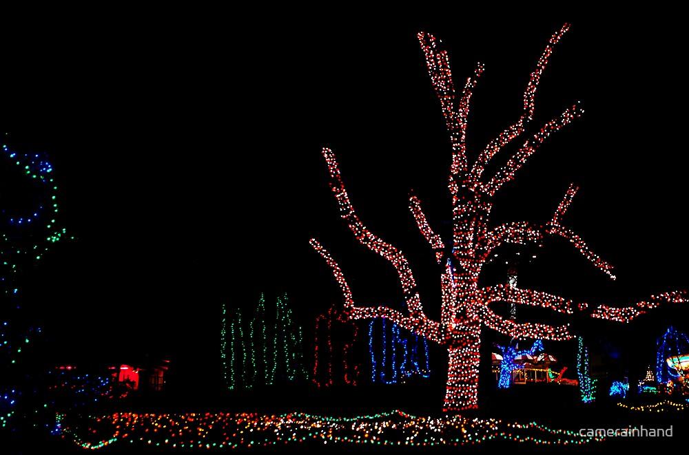 Amusement Park Christmas by camerainhand