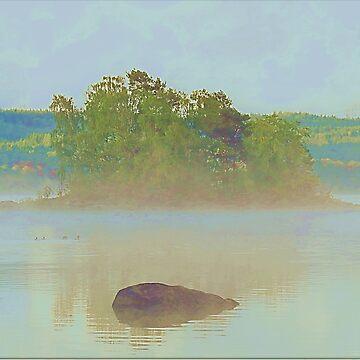 Lake morning by frugnusdesign