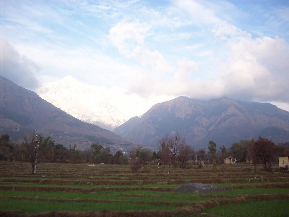 Dharamshala-Himachal Pradesh by shandar26