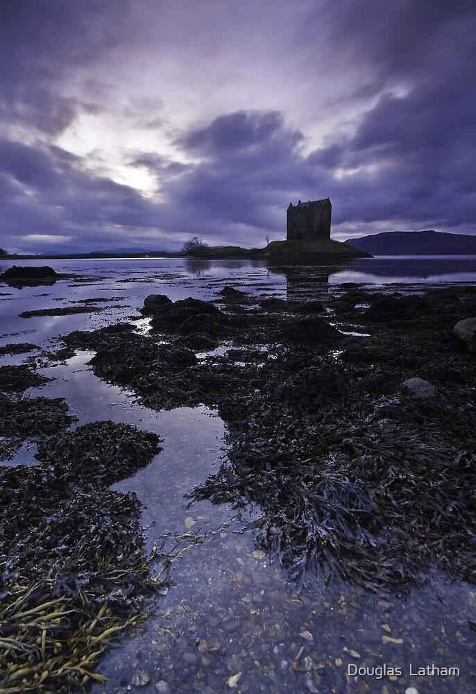Castle Stalker - Scotland by Douglas  Latham