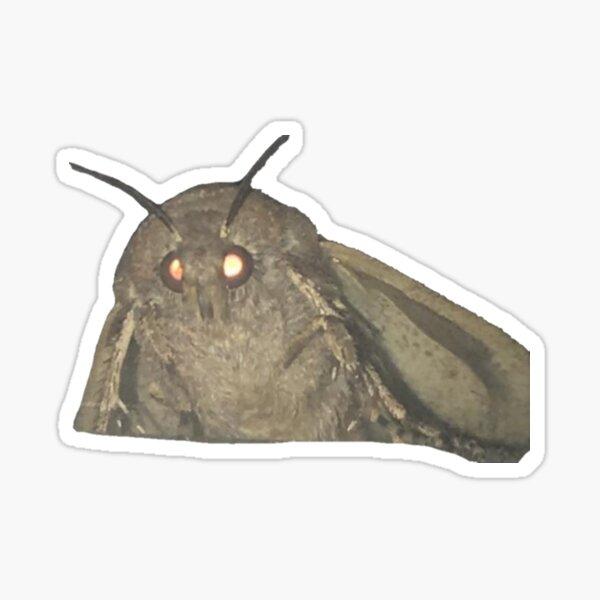lamp loving moth Sticker