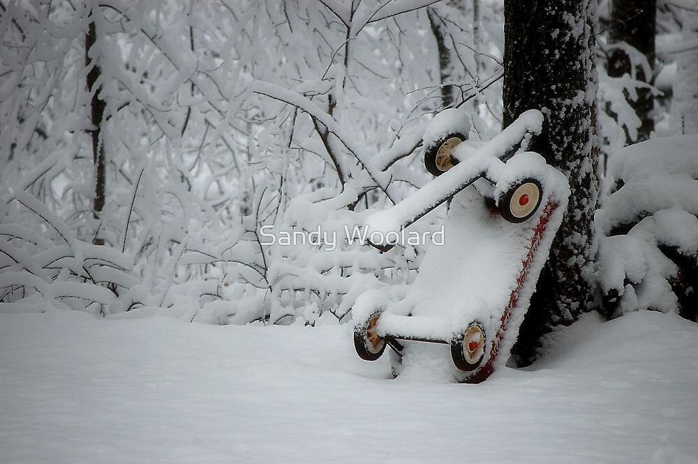 All White by Sandy Woolard