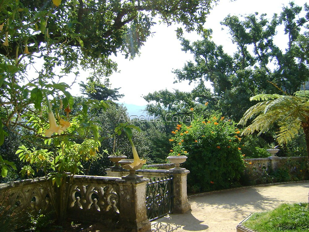 welcome to paradise 90..sintra portugal.. by Almeida Coval