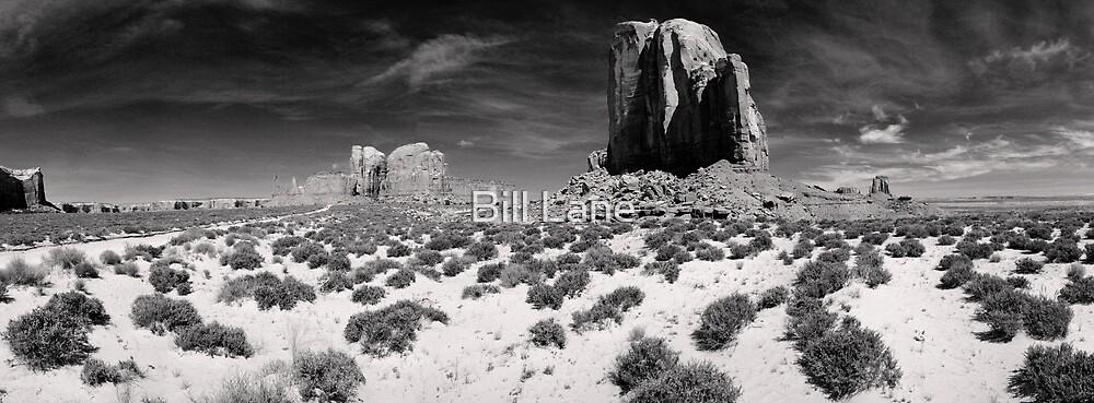 Monument Valley B&W by Bill Lane