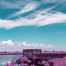 Lake side dock by Adam Nixon