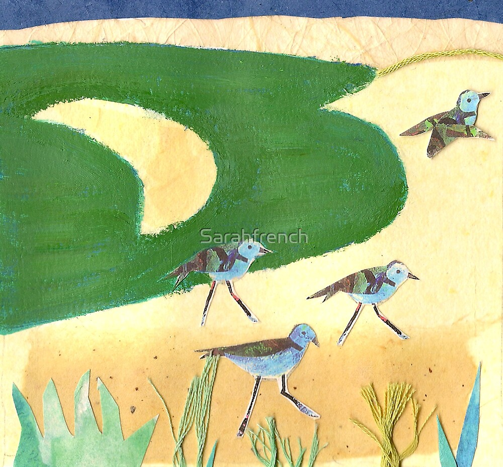 sandpipers by Sarahfrench