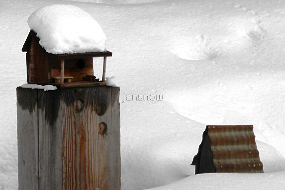 Gone South © by jansnow