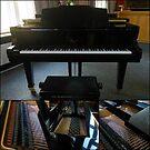 Grand Piano Collage by SunriseRose