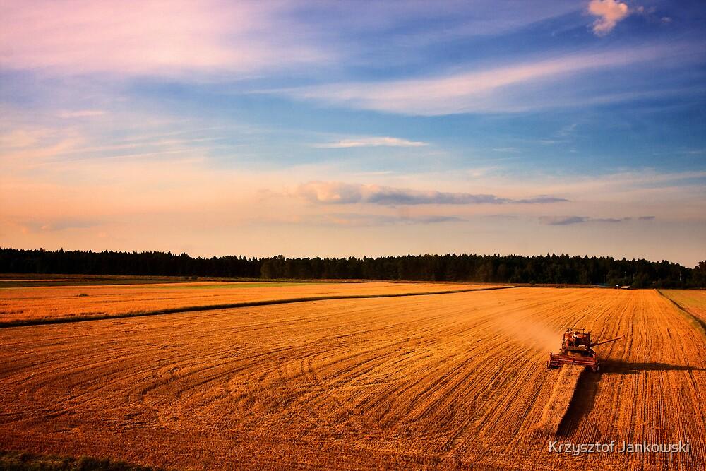 Harvester by Krzysztof Jankowski