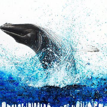 Whale by AshvinHarrison