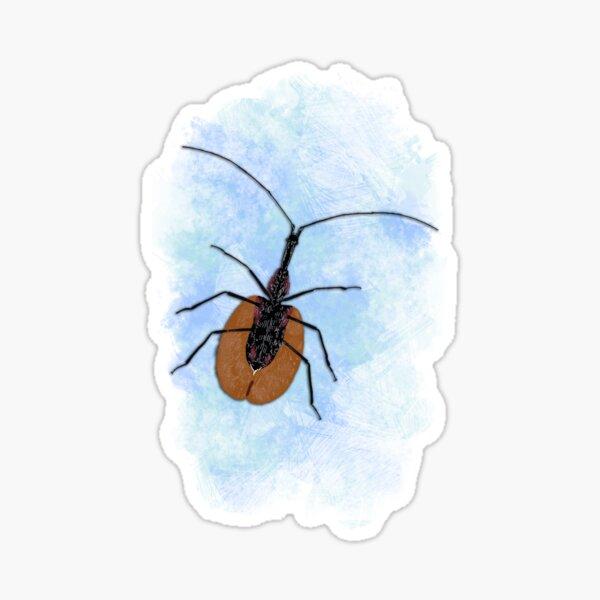 Insecta v7 Sticker