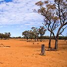 Outback Queensland by Ian Fegent