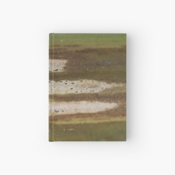 aging tracks Hardcover Journal