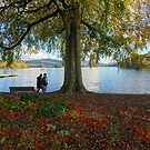 Windermere in Autumn by trish725