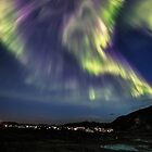 The beast in the sky by Frank Olsen