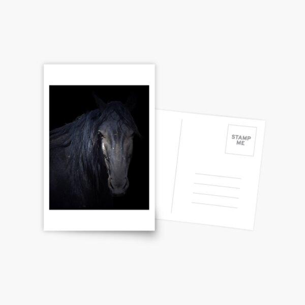 Dark Horse Postcard