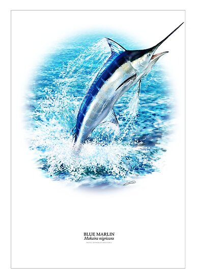 BLUE MARLIN POSTER 2 by DilettantO