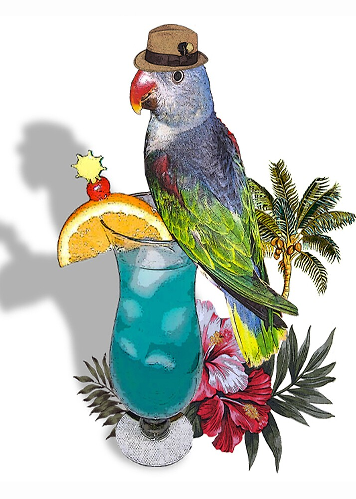 hawaiian cool by cardtricks