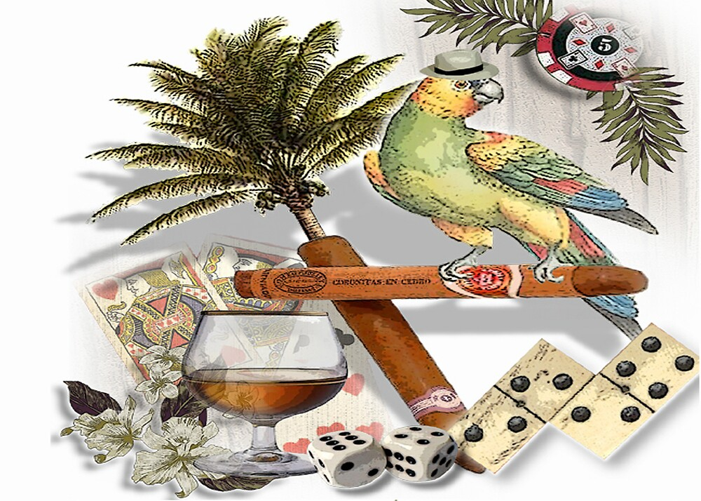 the dominoe parrot kid by cardtricks