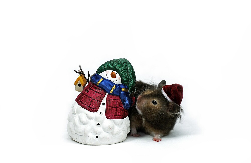 christmas hamster by speedily