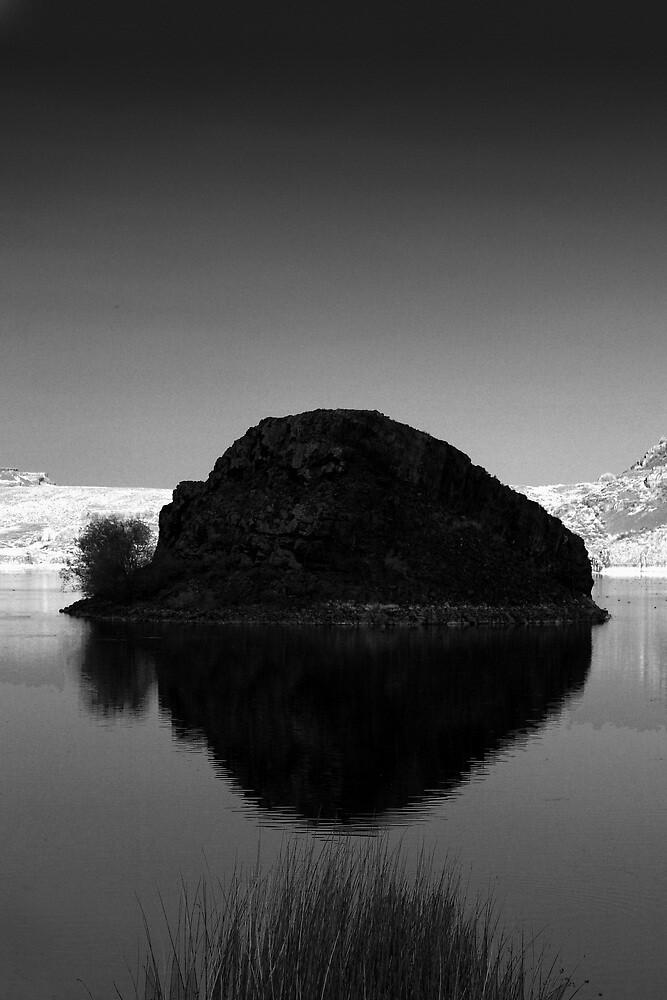 Eastern Washington: Island in Sun Lakes by Mike Irwin