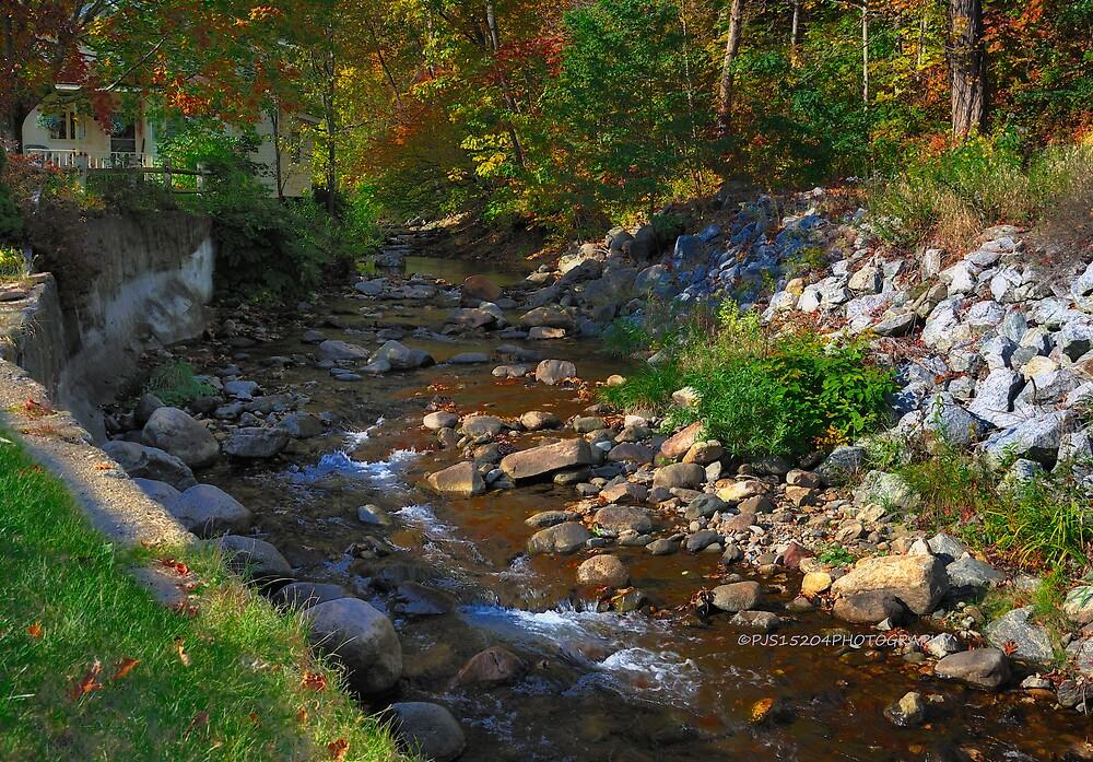 New Yorks Adirondack region XV by PJS15204