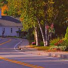 New Yorks Adirondack region XVI by PJS15204