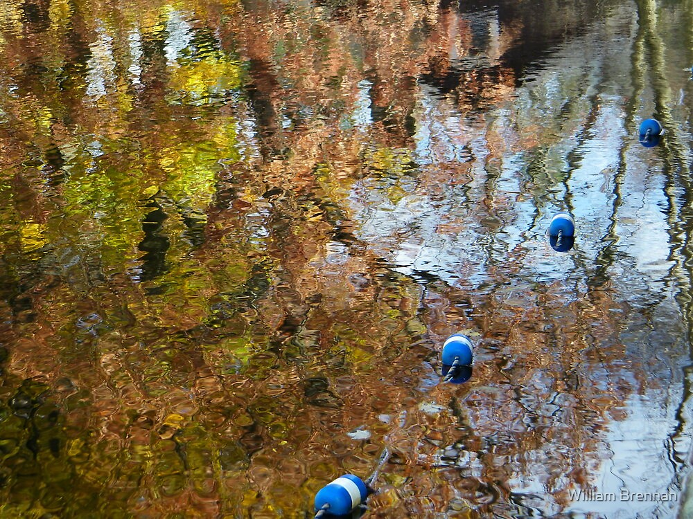 Fall colors reflected on Lake Telemark. by William Brennan