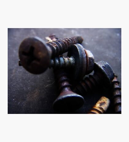 Aged Screws Photographic Print