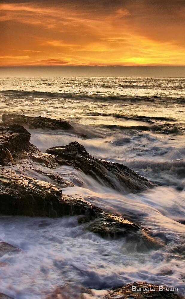 Rocky Shores by Barbara  Brown