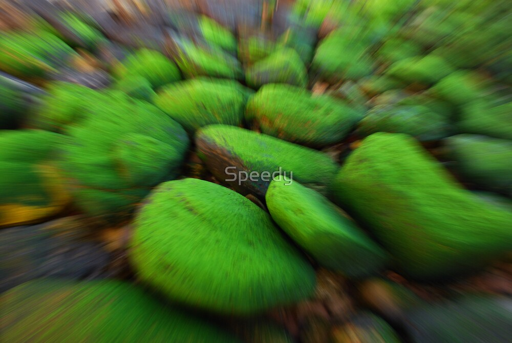 Blurred green mossy boulders by Speedy