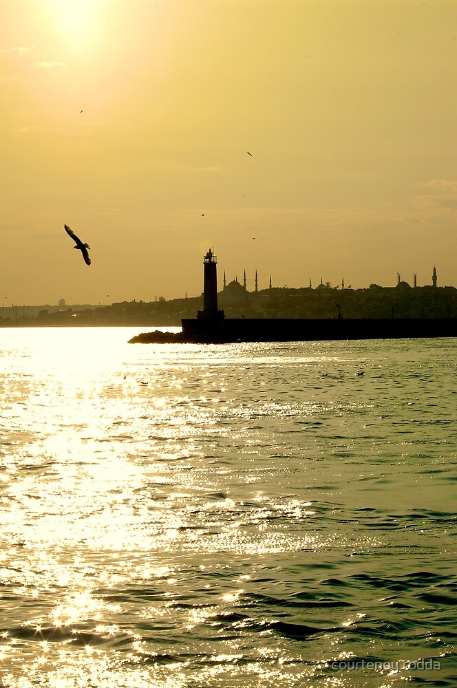 Sunset on the Bosphorus by courteney rodda