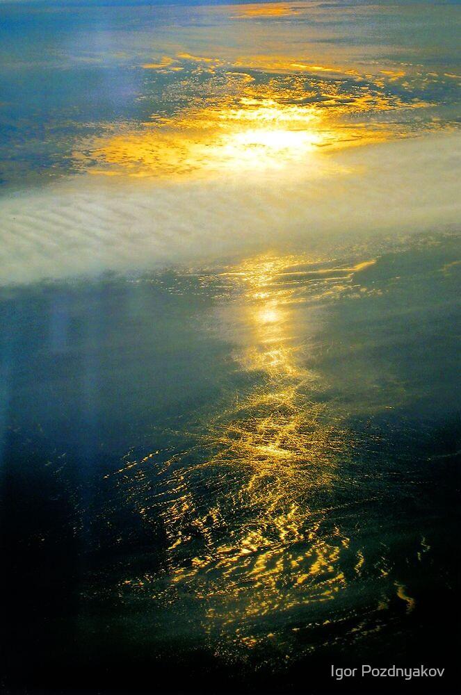 The Sea of Ice IV. Approaching Labrador by Igor Pozdnyakov