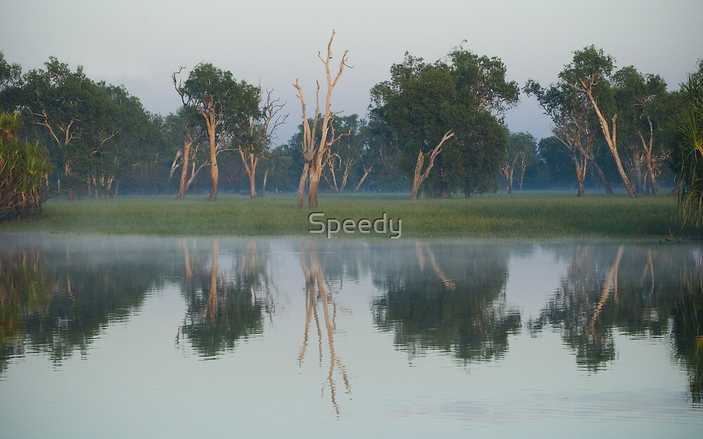 Yellow waters at sunrise by Speedy