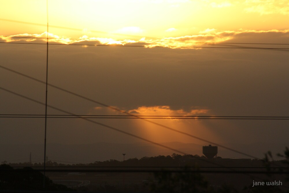 power lines at sunset by jane walsh