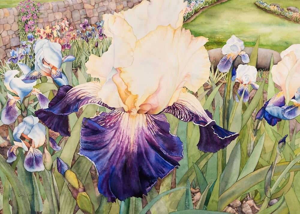 Iris Garden Watercolor by Gayle Mahoney