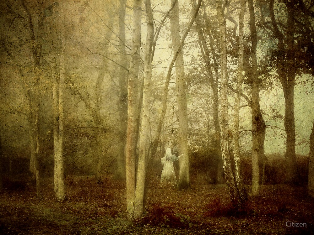 Spirit of the Woods by Nikki Brown