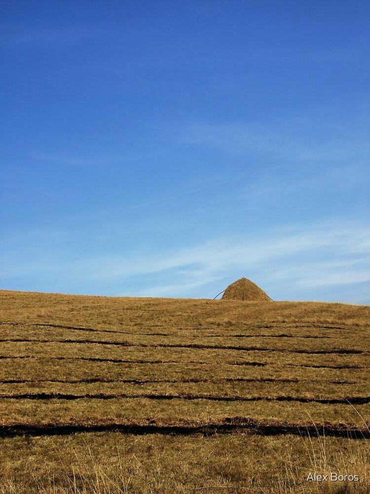 Distant Haystack by Alex Boros