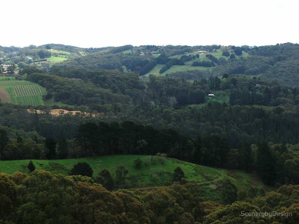 Rolling Green Hills by ScenerybyDesign