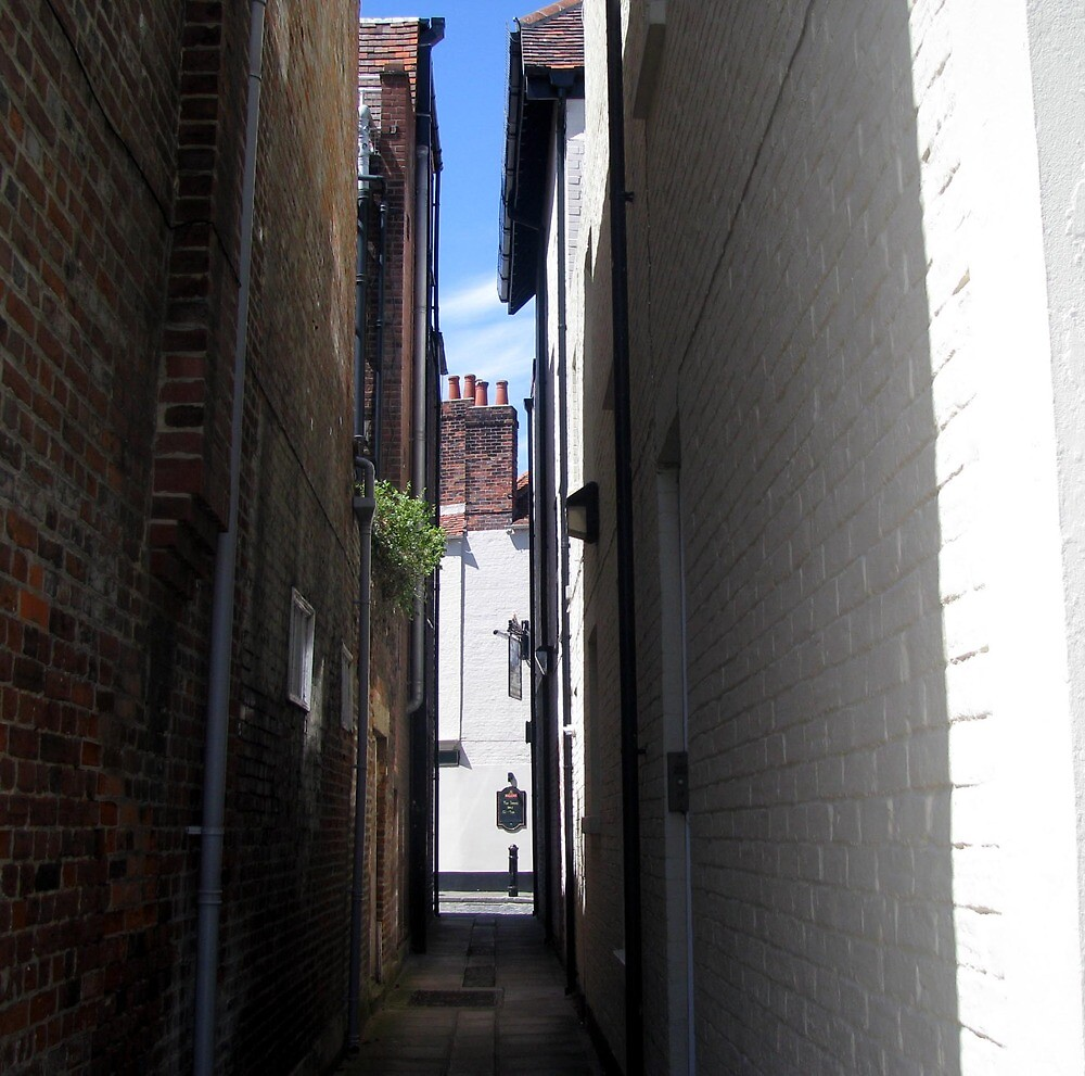 The Alley by Caroline Anderson