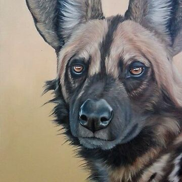 African wildlife series - Wilddog by AnetDuToit