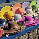 Hat Stall by V1mage