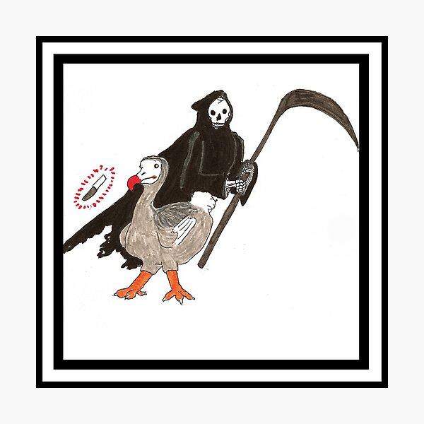 The Dodo! Photographic Print